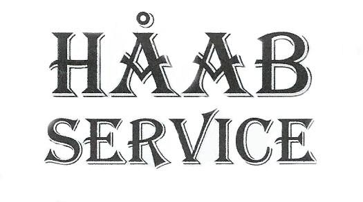 Logotyp för Hans-Åke Anlägg och Bygg Service