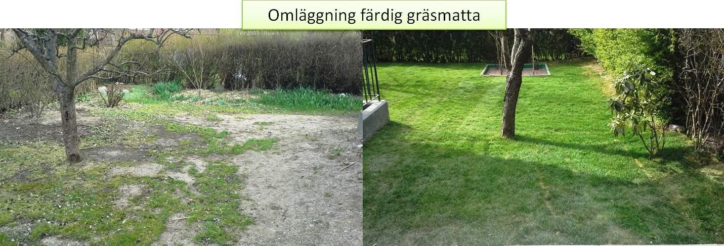 """Referensjobb """"Omläggning färdig gräsmatta"""" utfört av Gröna Bussen AB"""